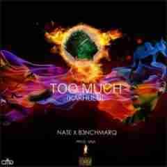 Nate - Too Much (Kakhulu) Ft. B3nchmarQ